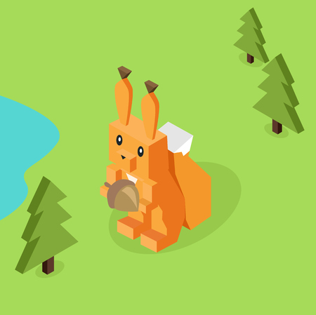 isolated squirrel: Wild animal squirrel isometric 3d.