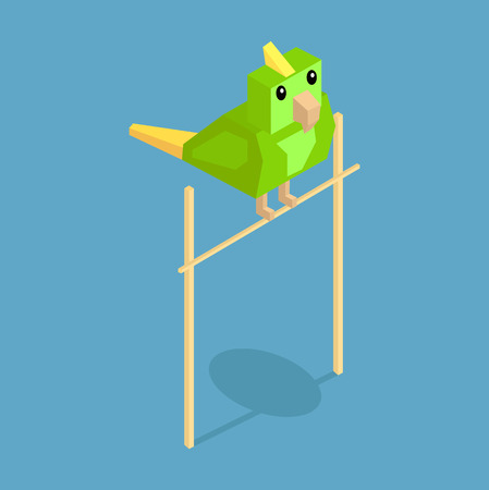 cartoon parrot: Pets parrot icon isometric 3d design. Pet and parrot, cane and parrot, animal parrot, parrot of pets, puppy animal, kitten character, nature domestic pets, fauna parrot bird, parrot vector illustration