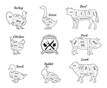 flank: Set a schematic view of animals for butcher shop. Cow and pork, cattle and pig, chicken and lamb, beef and rabbit, duck and swine, goose and turkey, meat illustration. Vector meat cuts thin line