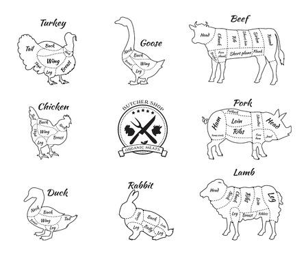 Stellen Sie eine schematische Darstellung von Tieren für die Metzgerei. Kuh und Schwein, Rind und Schwein, Huhn und Lamm, Rind und Kaninchen, Ente und Schwein, Gans und Truthahn, Fleisch Illustration. Vector Fleischstücke dünne Linie Vektorgrafik