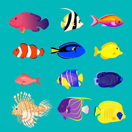 marine aquarium: Set of sea fish color design flat.