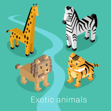 animal in the wild: Exotic animal set isometric 3d design. Exotic and animal, animals , cartoon animals, lion wild, cartoon wildlife, fauna giraffe animal, mammal animal, zebra creature illustration Illustration