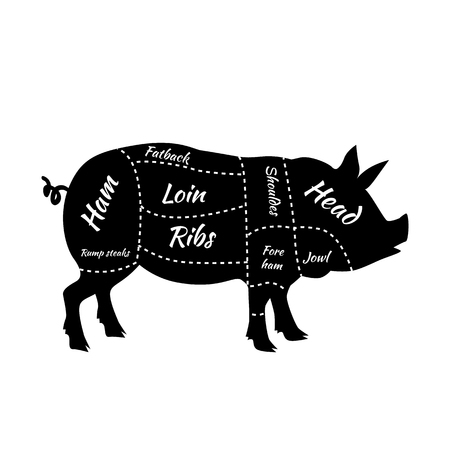 cut: Pork or pig cuts. American US cuts of pork. Barbecue illustration. Pork meat cuts. Butcher pork cuts diagram. Butchers selection. Butcher shop Illustration