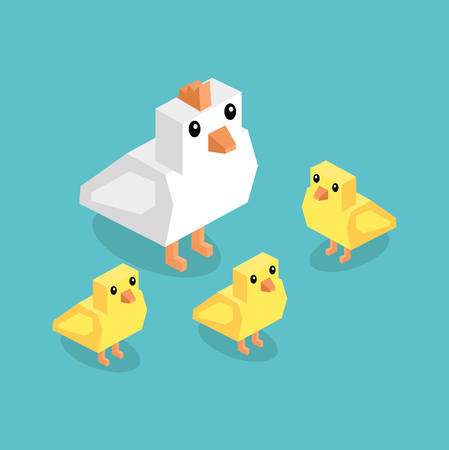 chicken coop: Isometric white chicken with yellow chick. Isometric white 3d chicken with yellow chickens isolated on background, cute a little young farm bird fluffy, adorable small bird poultry vector illustration