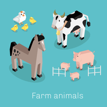 livestock: Farm animal set isometric 3d design. Cow and pig, sheep and chicken, farm animals, nature 3d natural livestock animal, fauna animal mammal, healthy character vector illustration