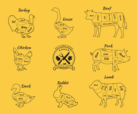 a leg: Set a schematic view of animals for butcher shop. Cow and pork, cattle and pig, chicken and lamb, beef and rabbit, duck and swine, goose and turkey, meat illustration. Vector meat cuts thin line