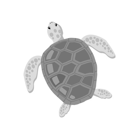 tardy: Turtle isolated on white background design flat. Tortoise with a big black carapace. The head and fins are covered with turtles speckled pattern. Creature  wildlife of wold world. Vector illustration Illustration