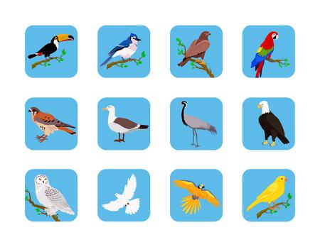 Colección de varios pájaros de diseño plano. Los pájaros que vuelan, búho y animales, vector del pájaro, salvaje águila, carácter y flora, la fauna y el vuelo, tucán y la ilustración de la zoología