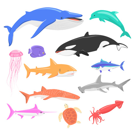 Marine fauna set of aquatic animals. Aquatic fauna, ocean or sea fish wildlife fauna, underwater aquarium exotic life fauna, dolphin water wild vector illustration isolated on white