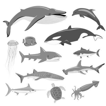 animales silvestres: fauna marina Conjunto de animales acuáticos. fauna acuática, al océano o al mar de peces, fauna silvestre bajo el agua del acuario de fauna exótica vida, agua delfín salvaje ilustración vectorial aislados en blanco Vectores