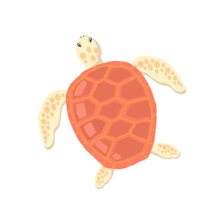 carapace: Turtle isolated on white background design flat. Tortoise with a big red carapace. The head and fins are covered with turtles speckled pattern. Creature  wildlife of wold world. Vector illustration Illustration