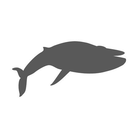 big fin: Black monochrome whale isolated on white background. Largest animal in world. Huge creating floating in the ocean or the sea. Big mammal whale with tail and fin living in water. Vector illustration Illustration