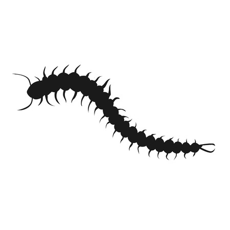 longest: Centipede insect design black isolated. Longest insect with many legs isolated on white background. Poisonous centipede with tentacles and antennas being of wildlife in flat style. Vector illustration
