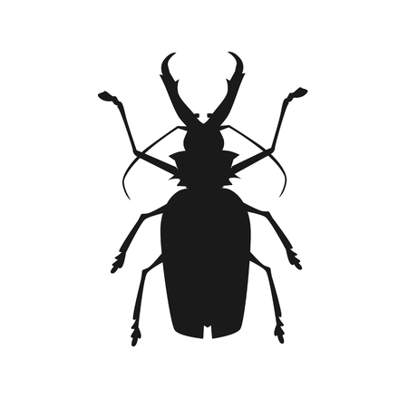 stag beetle: Icon of big beetle deer with horns. Stag beetle. Vector illustration