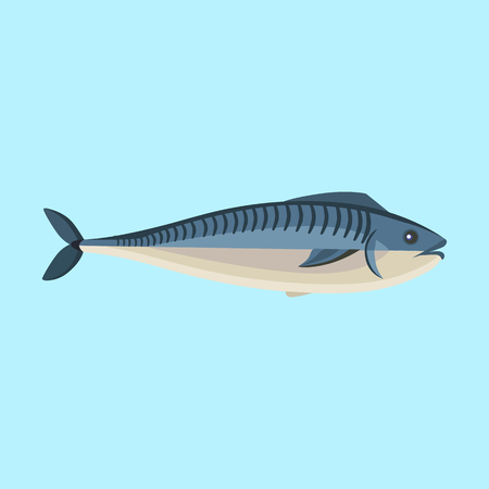 fin swimming: Fish icon design flat isolated. Fish sea animal or food, wildlife aquatic and nature ocean river fish, seafood life swimming with tail and fin, fauna marine style exotic, vector illustration Illustration