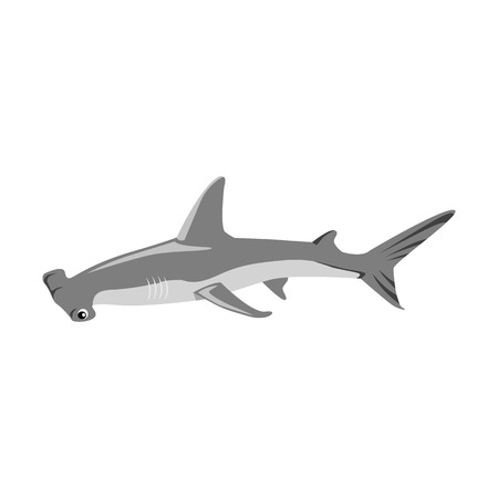 pez martillo: icono de tiburón martillo aisladas sobre fondo blanco. ilustración vectorial
