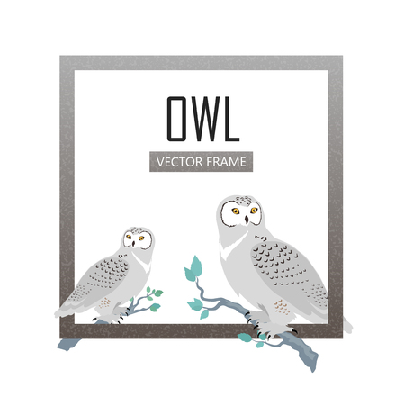 Snowy owls vector frame. Predatory birds wildlife concept in flat design. North fauna illustration for ,encyclopedia, childrens books illustrating. Beautiful owls birds seating isolated on white. Illusztráció