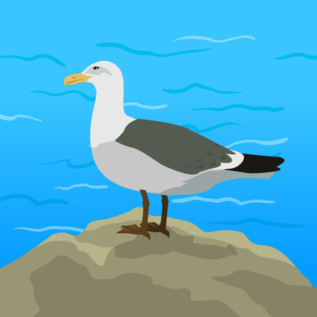 seabird: Gull vector. Sea bird wildlife in flat style design. Illustration for prints, vacation advertising, childrens books illustrating. Beautiful Seagull bird seating on seacost.