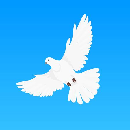 pacifism: Pigeon vector. Religion, wedding, peace, pacifism, concept in flat design. Illustration for religion attributes, childrens books illustrating. White pigeon flying wings spread isolated on blue.