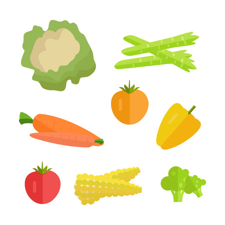 asparagus: Set of vegetables vector. Flat design. Carrot, tomato, pepper, paprika, corn, broccoli, asparagus cauliflower illustrations for conceptual banners icons infographics. Isolated on white background.