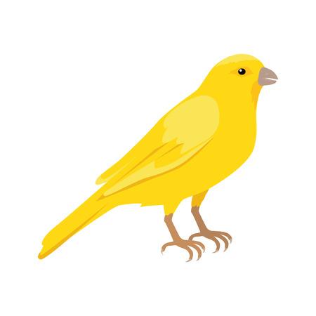 Kanarie vector. Binnenlandse zangvogel concept in de vlakke stijl design. Illustratie voor dierenwinkels reclame, kinderboeken illustreren. Mooie gele kanarie vogel zitplaatsen op de brunch op wit wordt geïsoleerd.