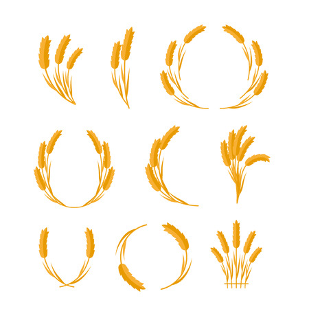 wheat grain: Set of wheat Ears vector illustrations. Flat design. New harvest, grain growing concept. Collection for bakery, bread store, agricultural company logo design. Ripe ears on white background.