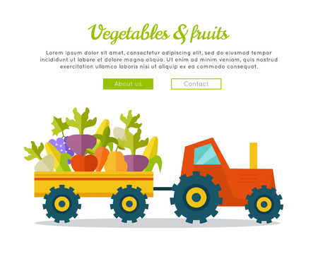 farm shop: Vegetables fruits farm concept banner. Flat design. Delivering fresh products from farm to market. Tractor with trailer carries greens. Template for farm, shop, transport company web page.
