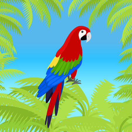 amazonian: Ara parrot vector frame. Birds of Amazonian forests in flat design illustration. Fauna of South America. Beautiful Ara parrots for icons, posters, childrens books illustrating. Isolated on white. Illustration