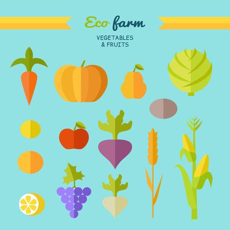 potatoe: Set of fruits vegetables vector. Flat design. Eco farm. Carrot, pumpkin, pear, apple, cabbage, beets, radishes, lemon grapes corn potatoe illustrations for conceptual banners icons infographic