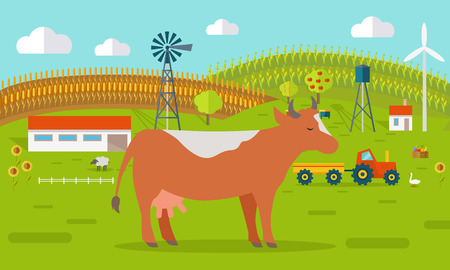farmyard: Farmyard vector illustration. Flat design. Cow standing against the farm landscape, tractor, cow, fields on background. Organic farming concept. Traditional agriculture. Modern ecological farm.