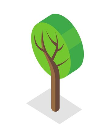 plant tree: Tree vector illustration in isometric projection. Plant picture for nature, woodworking, gardening concepts, web, app, icons, infographics. Isolated on white background. Illustration