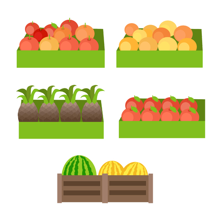 apples and oranges: Set of boxes with fruits. Vector in flat design. Fresh apples, oranges, pineapples, pomegranate, melons, watermelons on market. Delivery products, assortment illustration. Isolated on white