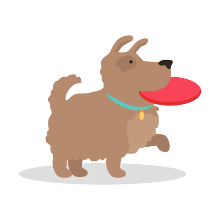 animalistic: Dog play with disc vector illustration in flat style. Playing with pet picture for animalistic conceptual banners, web, app, icons, infographics design. Isolated on white background.