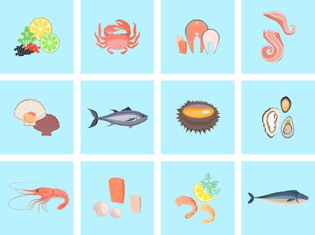 fresh seafood: Seafood set design flat fish and crab. Lobster and food oyster, fresh seafood, shrimp and menu octopus animal, shellfish lemon, fresh seafood vector illustration