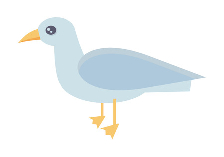 gull: Gull vector illustration in flat style. Illustration