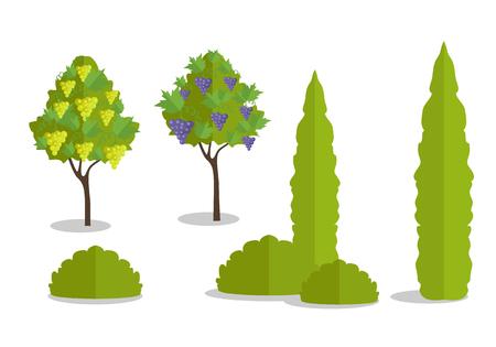 feuille arbre: Définir des arbres et des buissons isolés dans l'appartement. forêt Arbre, feuille arbre isolé, branche d'arbre nature vert, plante arbre éco branche, illustration en bois naturel organique. Vector illustration sur fond blanc.