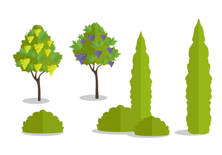 plant tree: Set of isolated trees and bushes in flat. Tree forest, leaf tree isolated, tree branch nature green, plant eco branch tree, organic natural wood illustration. Vector illustration on white background.