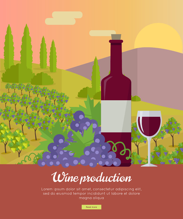 viniculture: Wine production banner. Bottle of wine, beaker, vineyard, wooden barrel, with grape valley on background. Creative advertisement poster for red wine. Part of series of viniculture preparation. Vector