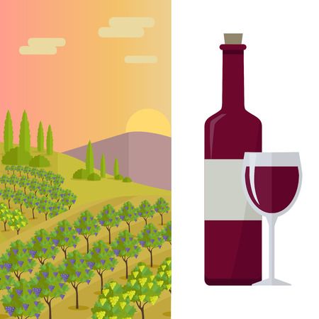 red wine glass: Grapes leaves in a sunny vineyard. Bottle with label and glass of red wine. Vineyard langscape. Rural landscape with vineyard and grapes bunches. Landscape with rolling hills and valleys.