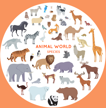 mammals: Set of animal species vector. Flat style. Big collection of mammals of different geographical latitudes and continents. Wild and domestic herbivores, predators, birds illustrations. Isolated on white.