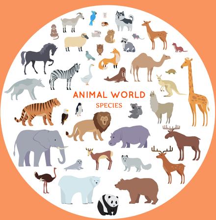Set van diersoorten vector. Vlakke stijl. Grote verzameling van zoogdieren van verschillende geografische breedten en continenten. Wilde en gedomesticeerde herbivoren, roofdieren, vogels illustraties. Geïsoleerd op wit.