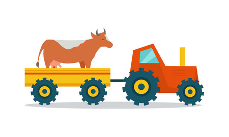 mowing: Domestic animals transportation vector. Flat design. Tractor with trailer caring cow. Cattle mowing on the farm illustration. Farming concept for meat, agricultural, transport companies. On white. Illustration