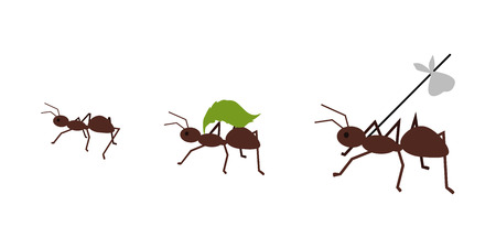 leaf insect: Brown ant carrying her baggage on tree branch. Ant carrying green leaf. Ant icon. Ant holding. Insect icon. Termite icon. Isolated object in flat design on white background. Vector illustration.