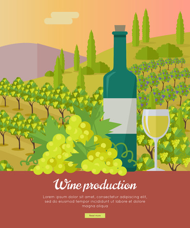 vinification: Wine production banner. Bottle of wine, beaker, vineyard, wooden barrel, with grape valley on background. Creative advertisement poster for white wine. Part of series of viniculture preparation. Vector