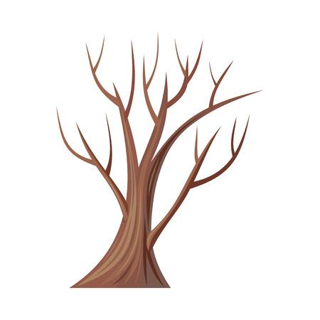 ツリー。オークは、白で隔離。葉のない裸の木。オークは、ツリーまたはブナ科ブナ科コナラ属の低木です。 別の木のシリーズの一部。図  イラスト・ベクター素材