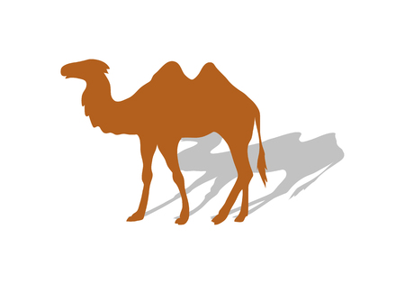 Transportation of goods by camel. Worldwide warehouse deliver through Africa. Logistics shipping and distribution. Camel with shadow. Loading and unloading. Part of series of worldwide delivery Illustration