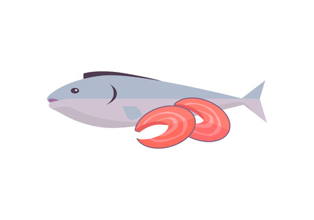 brawn: Salmon fish vector Illustration. Flat style design. Fresh seafood concept. Fish with red meat sliced on pieces.  illustration for grocery shop, market, signboards, menu, logo, icons.
