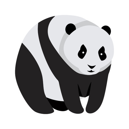 Giant panda bear isolated on white. Animal native to south central China. Recognized by large, distinctive black patches around eyes, over ears, and across round body. Sticker for children. Vector