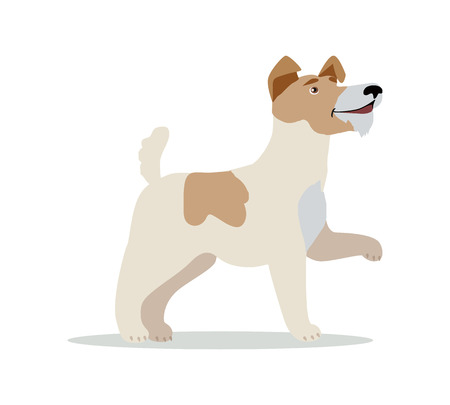 fox terrier puppy: Smooth Fox Terrier dog breed isolated on white. Wire Fox Terrier. Jack Russell Terrier, Miniature Fox Terrier and Rat Terrier. Cartoon puppy. Home pet. Child fun pattern icon. Vector illustration