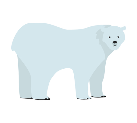 Polar bear flat style vector. Wild and dangerous predatory animal. North fauna species. For nature concepts, children s books illustrating, printing materials. Isolated on white background